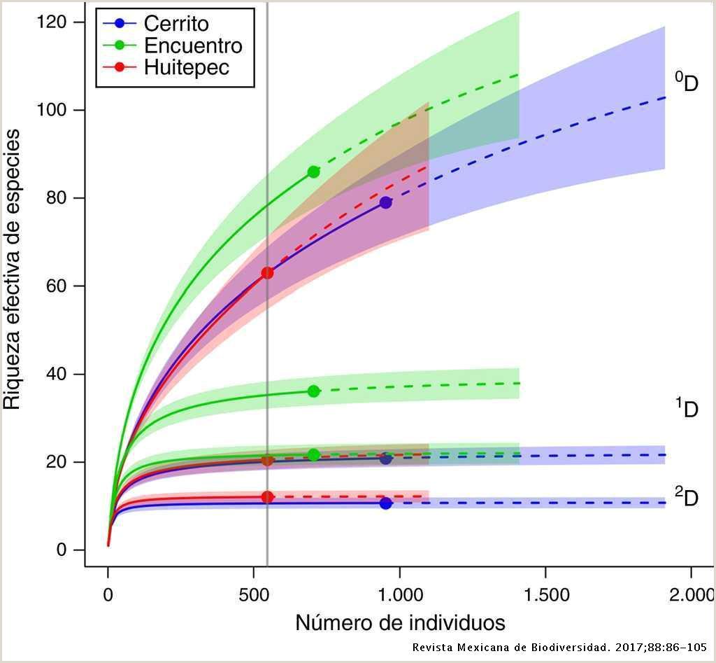 Diversidad de chinches Hemiptera Heteroptera en bosques