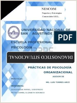 Nes Universidad Nacional De San Agustinde Arequipa