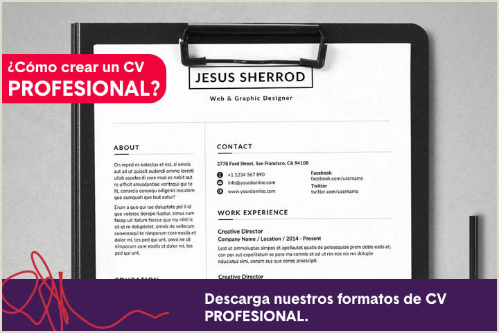 Descargar Hoja De Vida Con Perfil Profesional Search Humanfactor Leaders