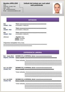 Descargar Hoja De Vida En Word Minerva Modelo De Curriculum Vitae Hecho Modelo De Curriculum Vitae
