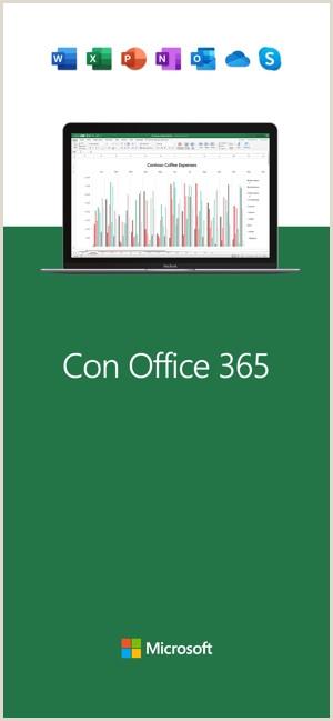 Descargar Hoja De Vida En Word Sencilla Microsoft Excel En App Store
