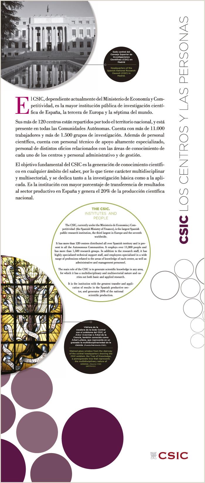 Descargar Hoja De Vida Funcion Publica Persona Natural La Vid El Vino Y El Csic