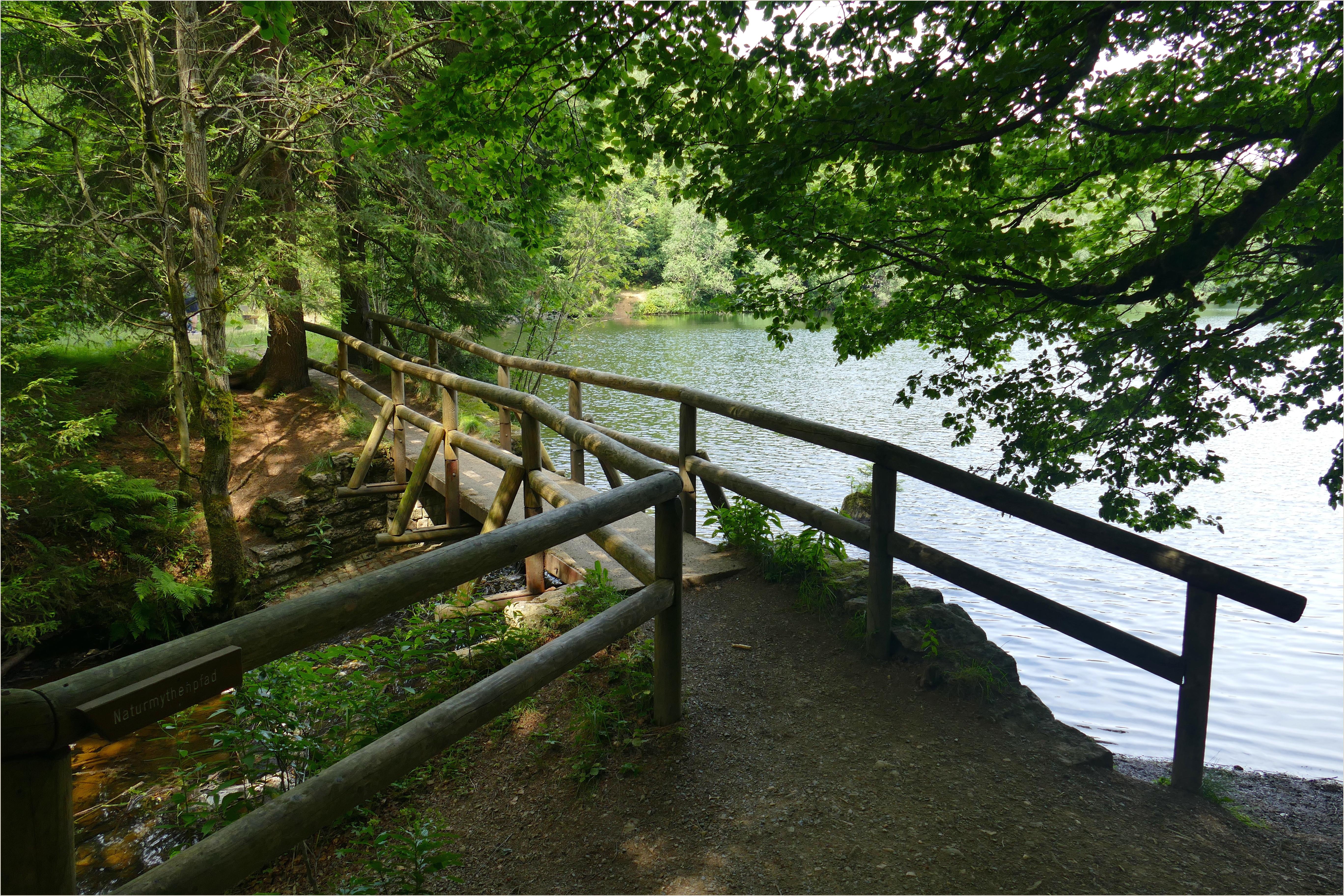 Fotos gratis paisaje naturaleza bosque sendero lago
