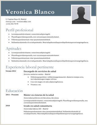 Descargar Plantillas Curriculum Vitae Para Rellenar Gratis Ejemplos De Cv Sin Experiencia Laboral