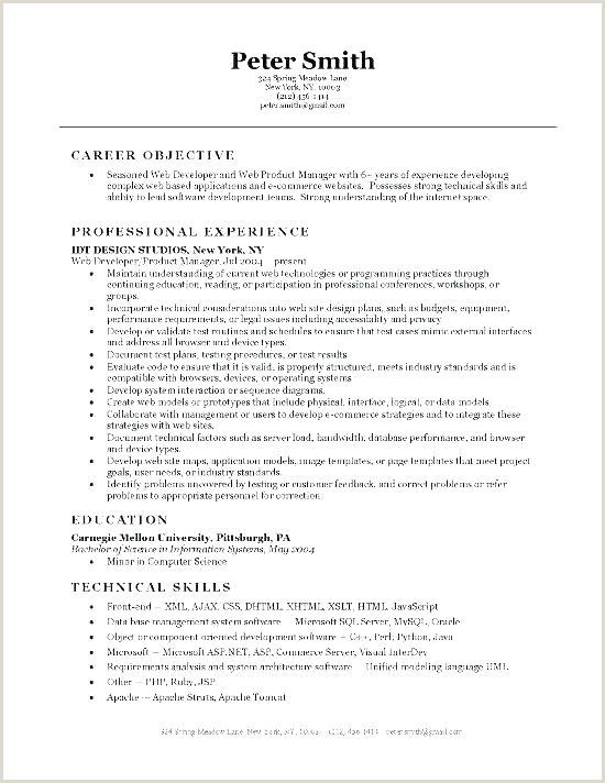 Developer Cover Letter It Programmer Sample Resume – Podarki