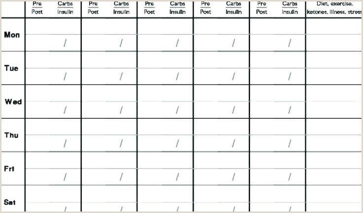 Diabetic Printable Log Book Sheet Diabetes Test Log Template