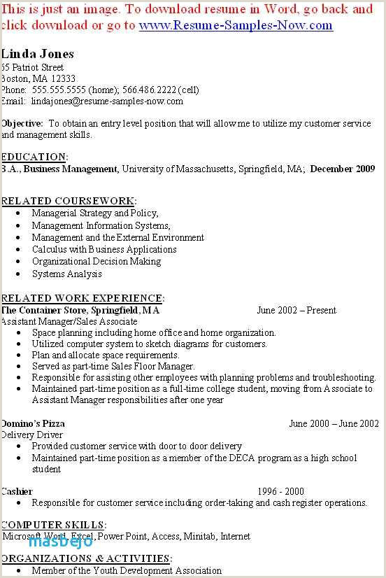 Director Of Sales Resume Awesome Director Sales Resume