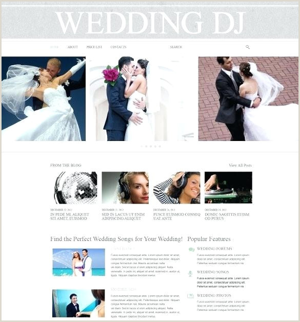 Dj Contract form Wedding Website Template Wedding Dj Contract Template