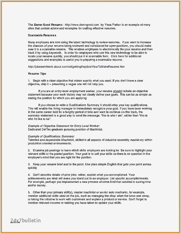 Dj Resume Sample Professional Dj Resume Examples Awesome 22