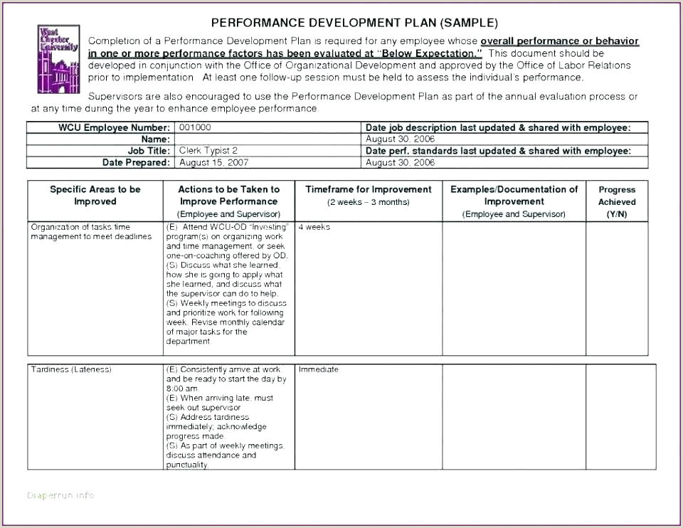 Job Performance Review Employee Performance Template