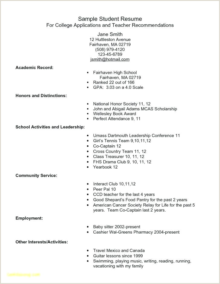 Dog Sitting Resume Daycare Business Plan Template