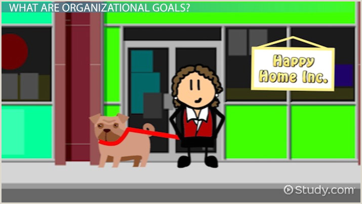 What Are Organizational Goals Definition Types