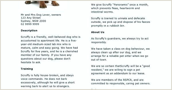 Pet Sitter Cover Letter Best Ideas Dog Walker Resume