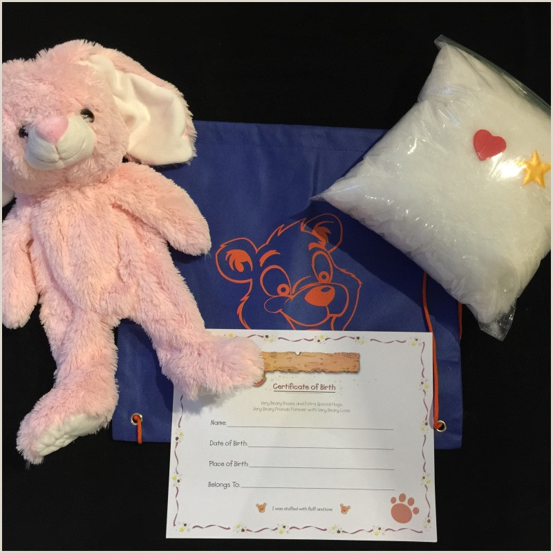 Doll Birth Certificate Build A Bear Parties Long island Party Xpress