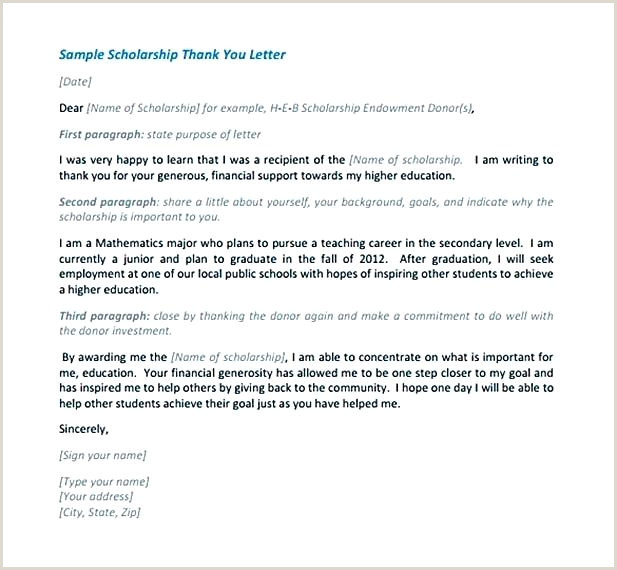 Donation Decline Letter How to Write A Scholarship Thank You Letter Template