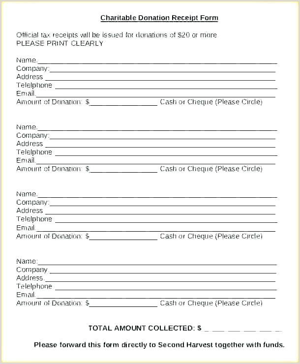 Donation form Template Pdf Donation Slip Template