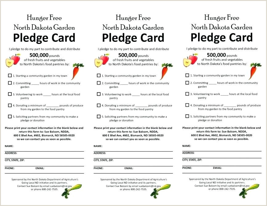 Donation Reply Card Template Donation Pledge Card Template