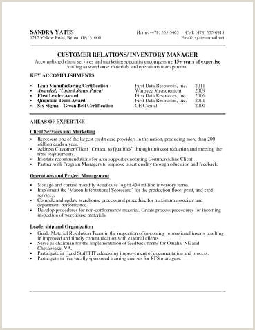 41 Simple format De Cv Xenakisworld