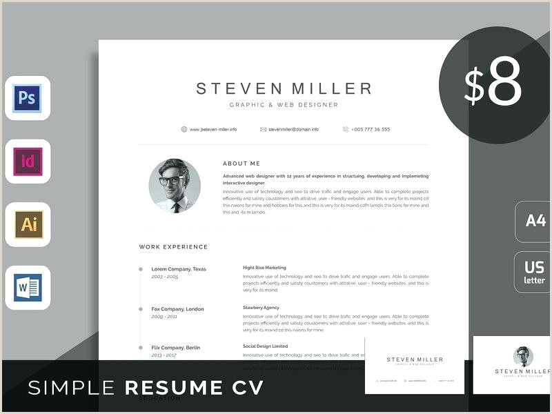 Modern Resume Template Word Clean Free Download Re 2013