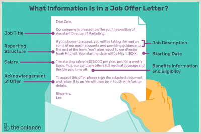 What Is Included in a Job fer Letter With Samples