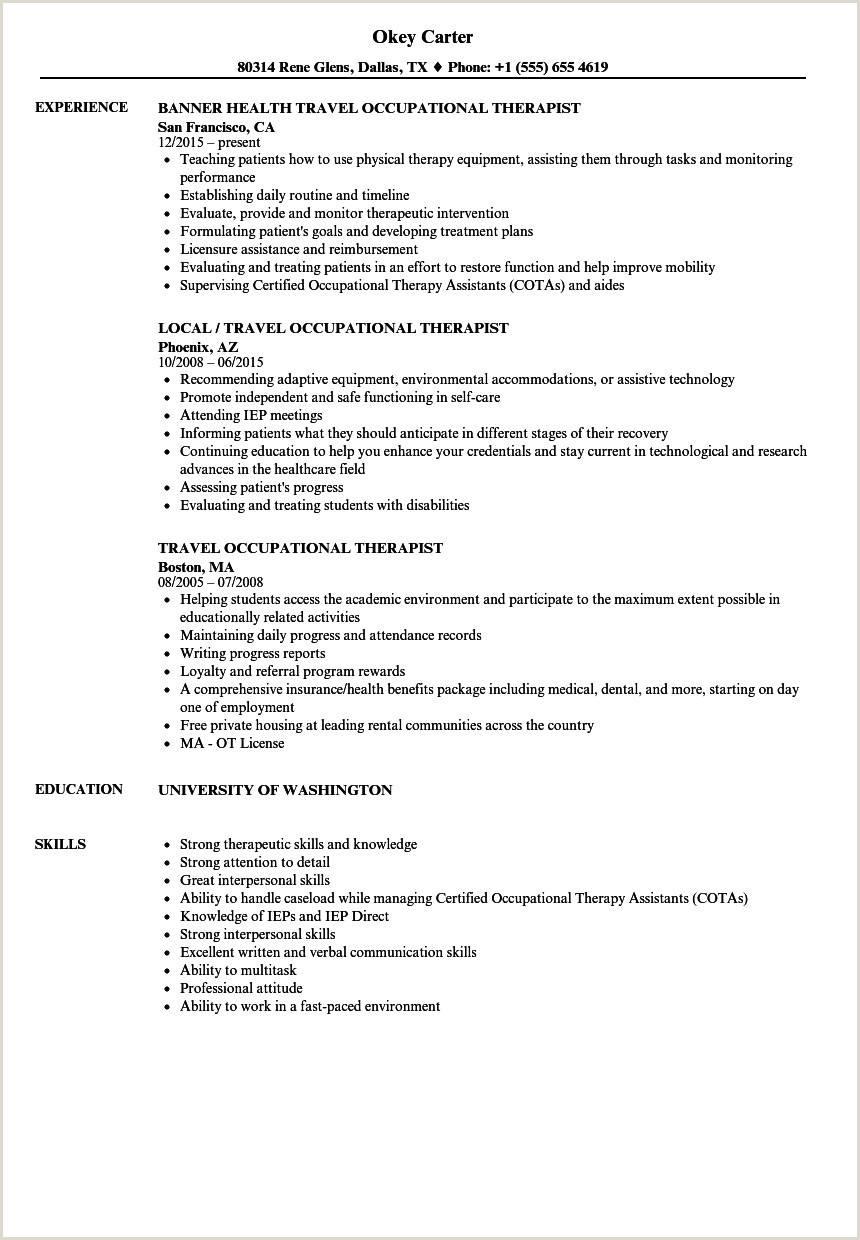Professional Business Resume Best Example Resume Luxury