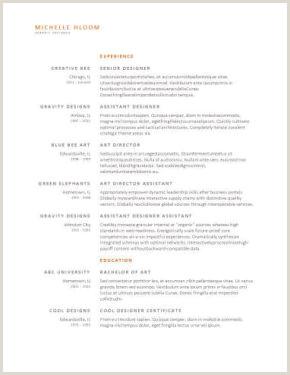 Ejemplos De Curriculum Vitae Para Rellenar E Imprimir Más De 400 Plantillas De Cv Y Cartas De Presentaci³n Gratis
