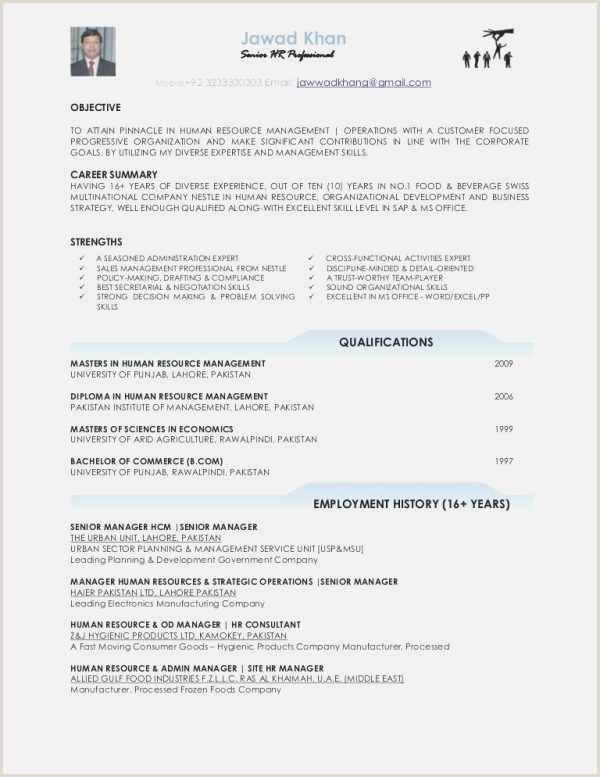 Free 58 Electronic Resume Professional