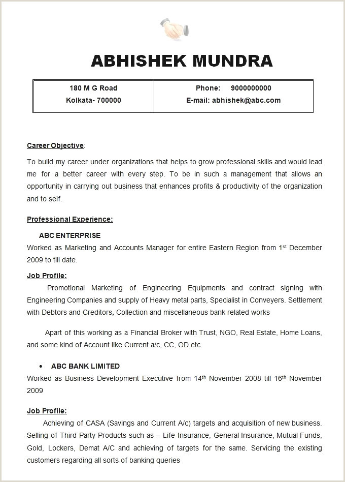 Ems Narrative Template Free Professional Resume Sample Cv Template Download Writing