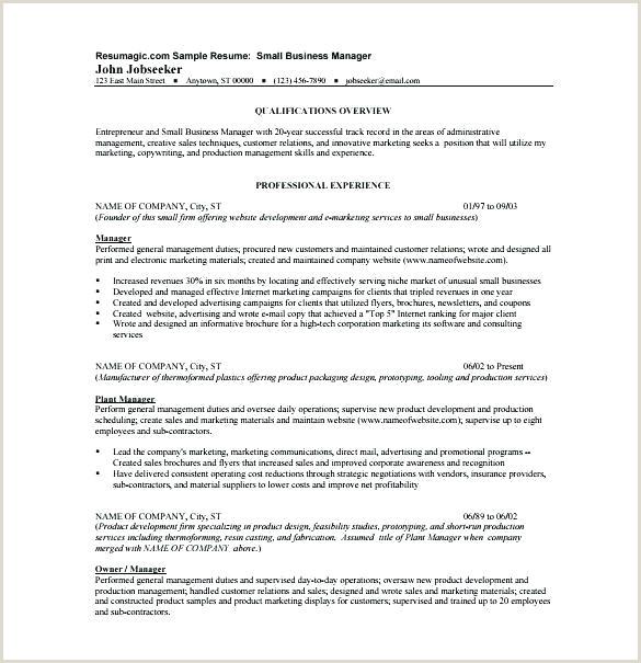 Entrepreneur Resume Samples Entrepreneur Resume Template