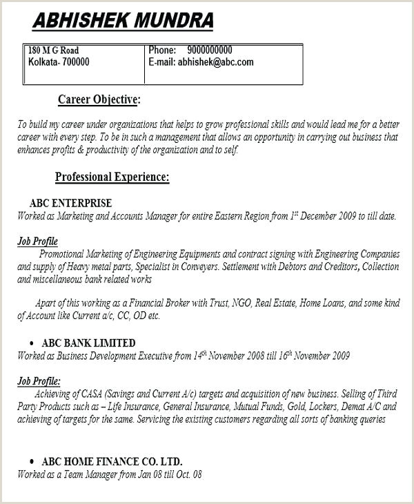 Entry Level Marketing Resume Unique Professional Templates