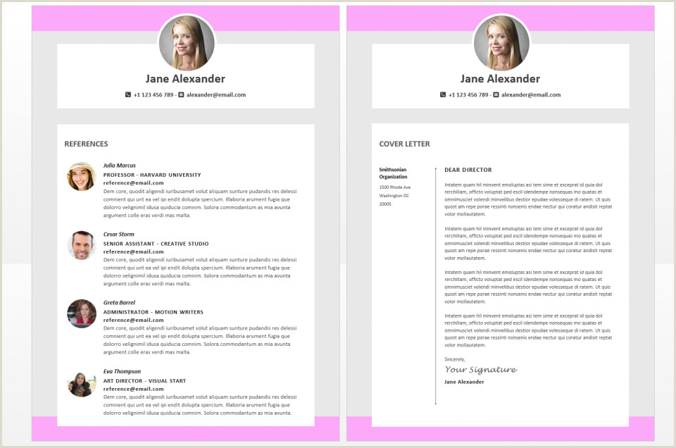 Infographic Resume Template Venngage Timel