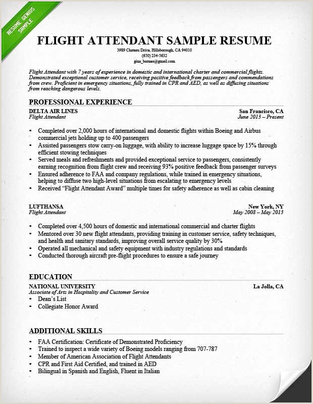 Sample Resume Pdf Professional Cv De Mercial Sample Resume
