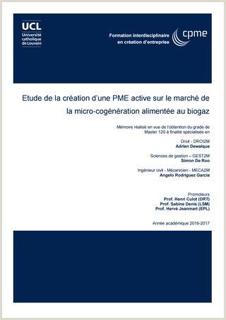 Etude de la création d une PME active sur le marché de la