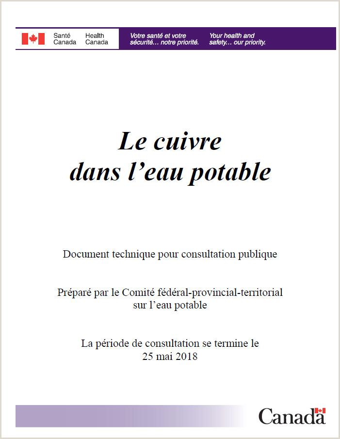 Europass Cv format Bg Le Cuivre Dans L Eau Potable Document Technique Pour