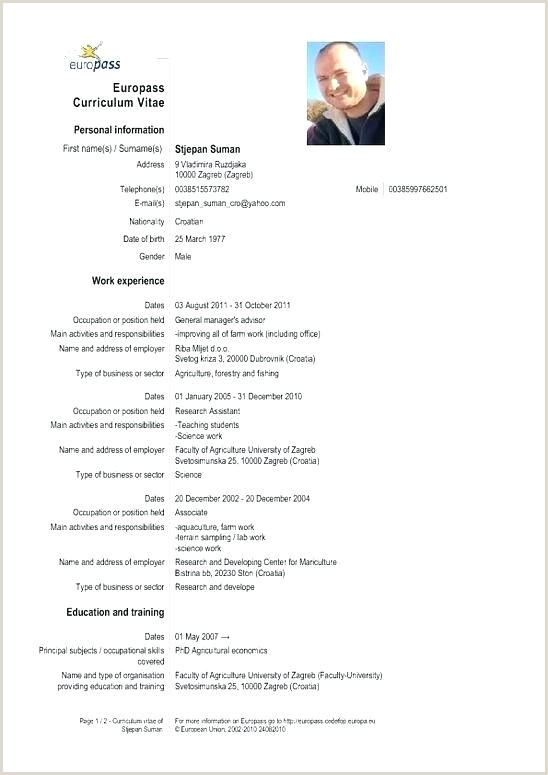 european cv template – theredteadetox