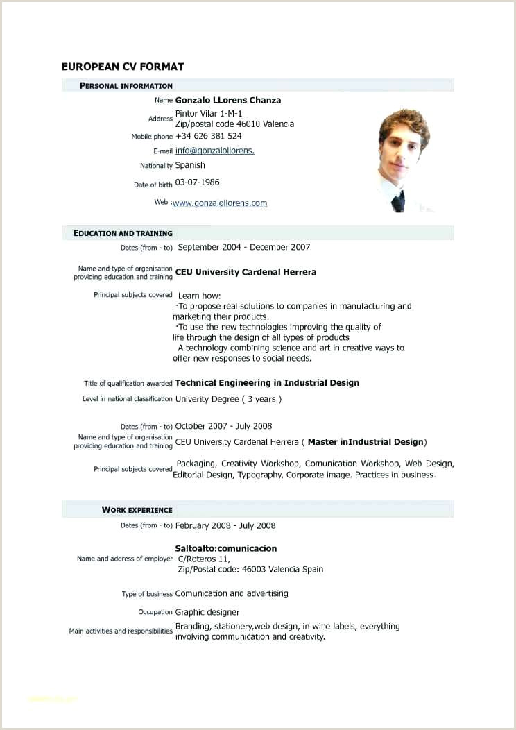 Europass Cv format English Cv Template