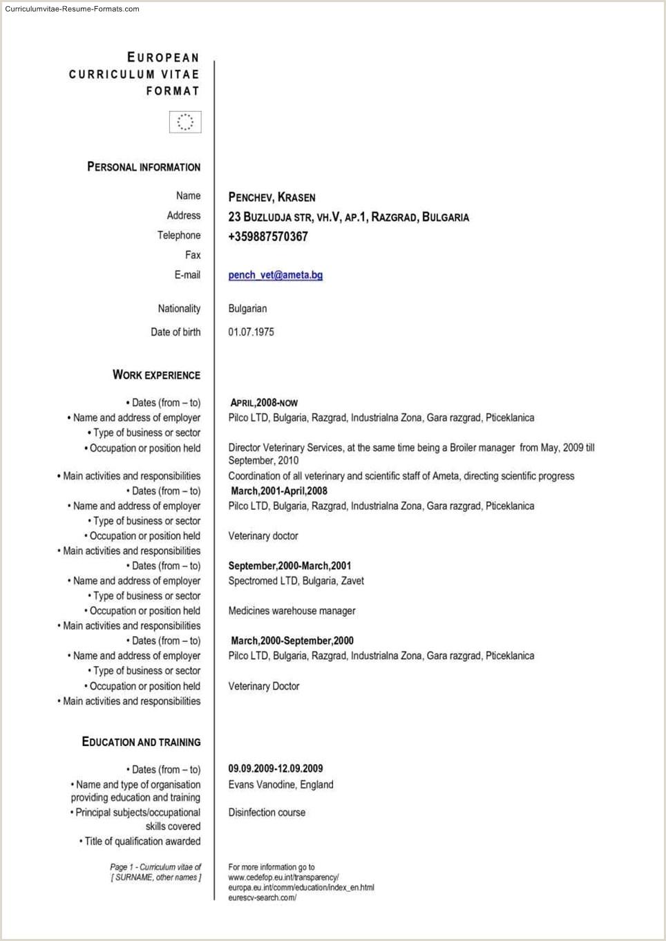 25 European Cv Format