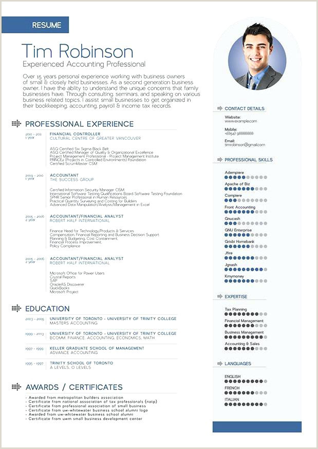 Template Co Format Cv English Example Academic – jonandtracy