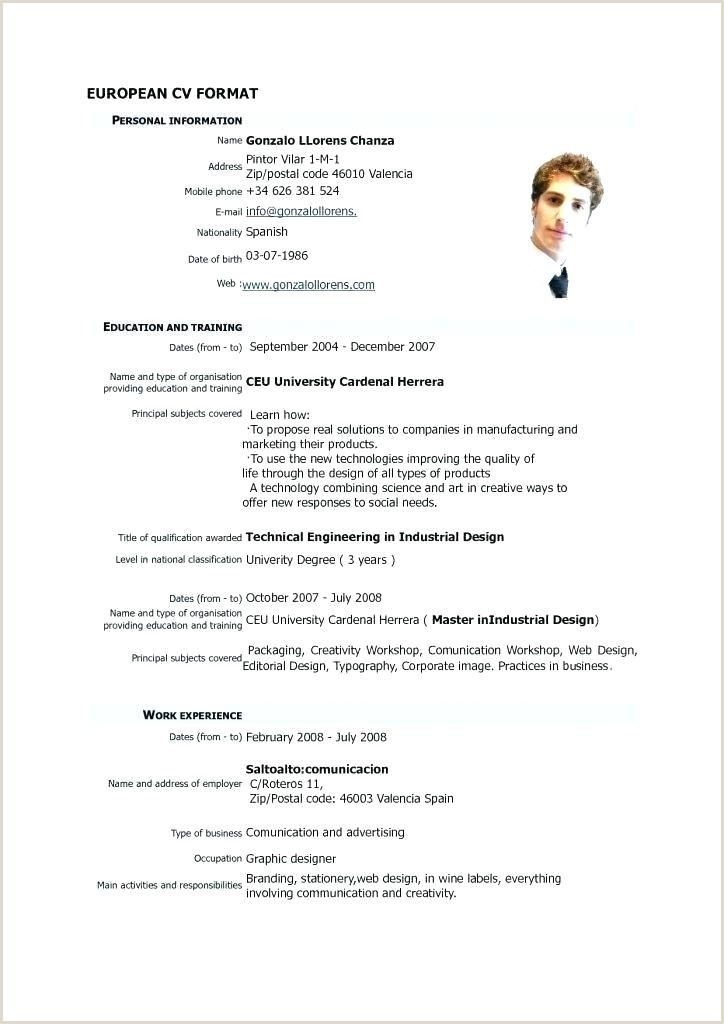 Europass Cv format Georgian Curriculum Vitae Template