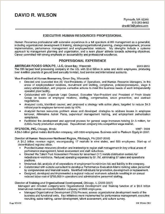 Europass Cv format German Resume Beriberi Co Cv English Template Europass Doc Sample