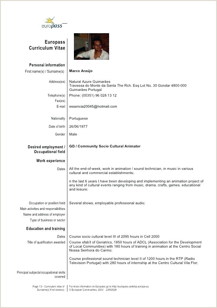Europass Cv format In Italian Lovely format Template Doc European Cv Example Curriculum