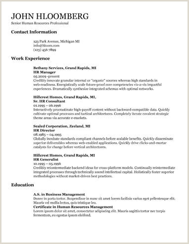 19 Free Resume Google Doc Templates Download