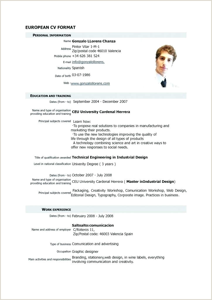 Curriculum Vitae Sample Format Template 8 Dentist European