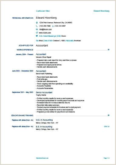 Europass Cv Template Doc European Format Docx – lotusdigital