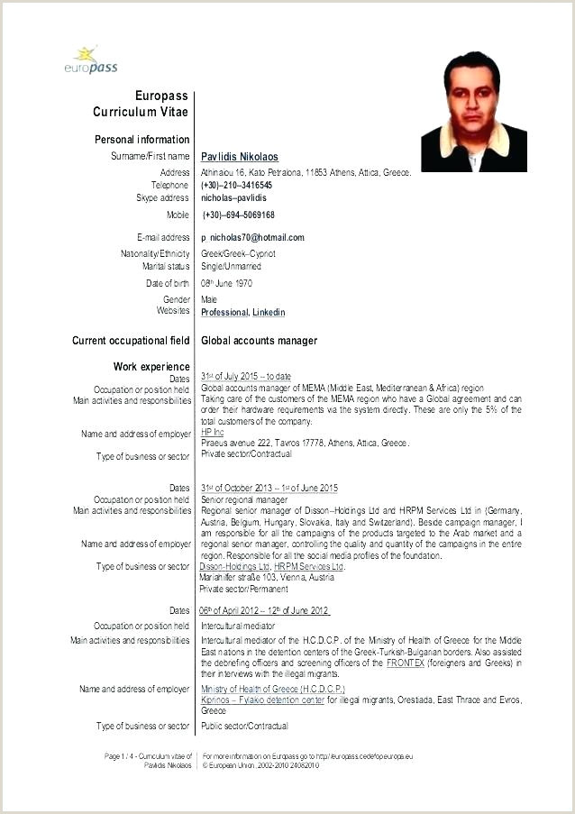 Lovely Format Template Doc European Cv Example Curriculum