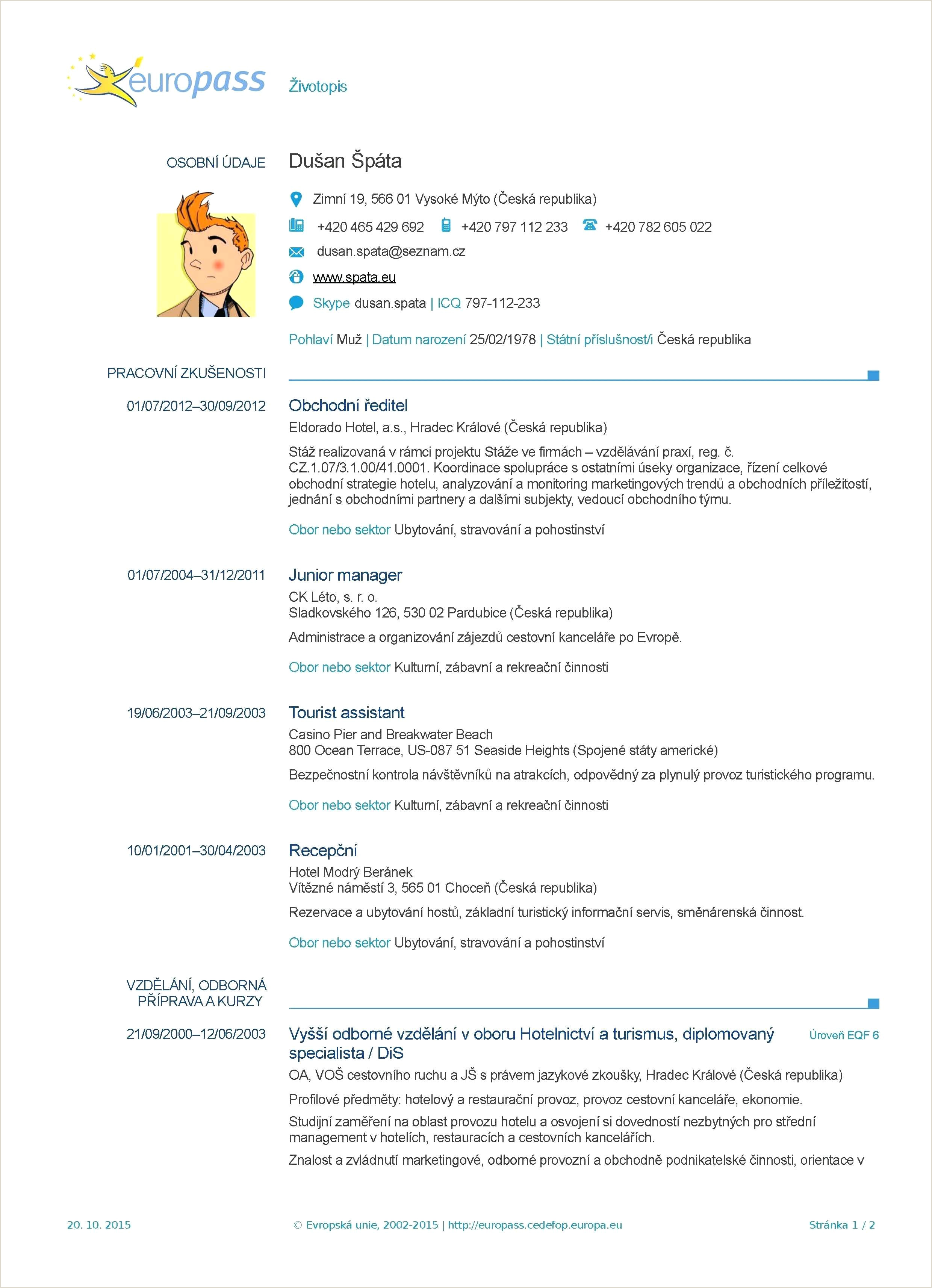 template Curriculum Vitae Y Europass Cv Template Hrvatski