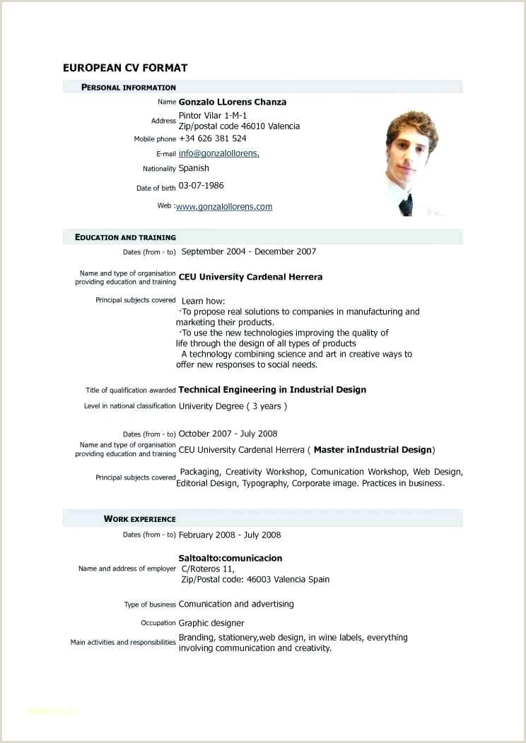 Europass Cv format Word English Cv Template