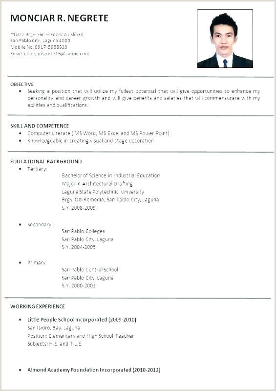 cv english template