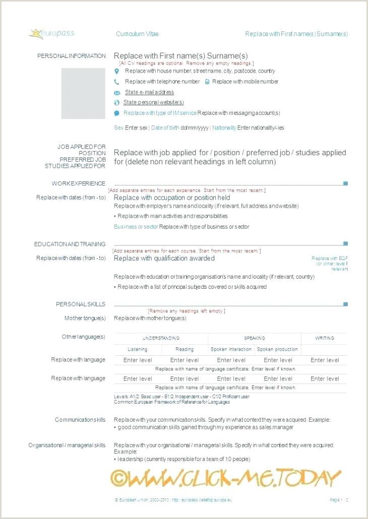 cv template europass – metabots