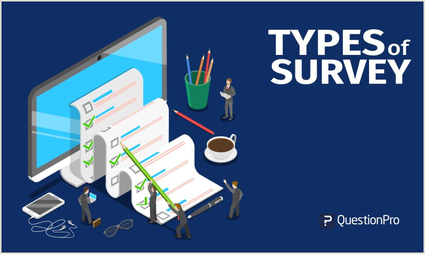 Types of Survey with Examples